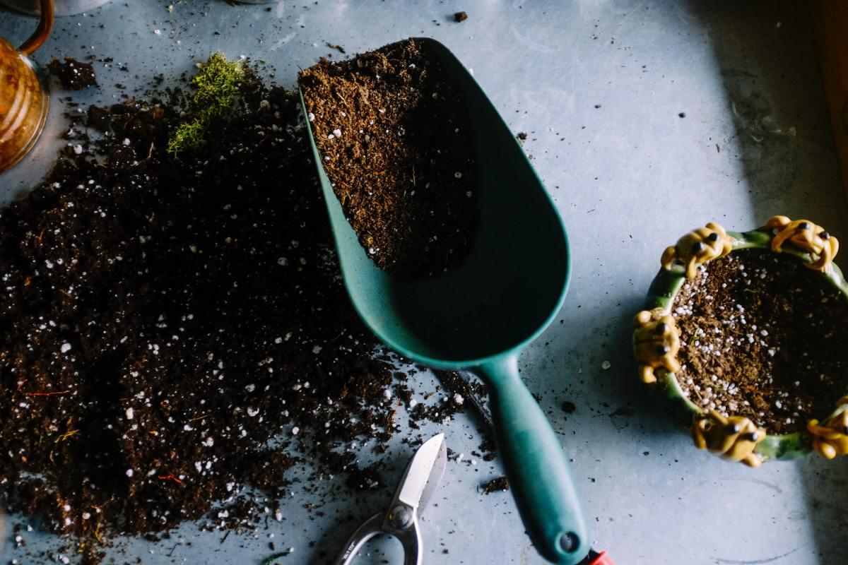 Learn all about organic (vs. non-organic) soil.