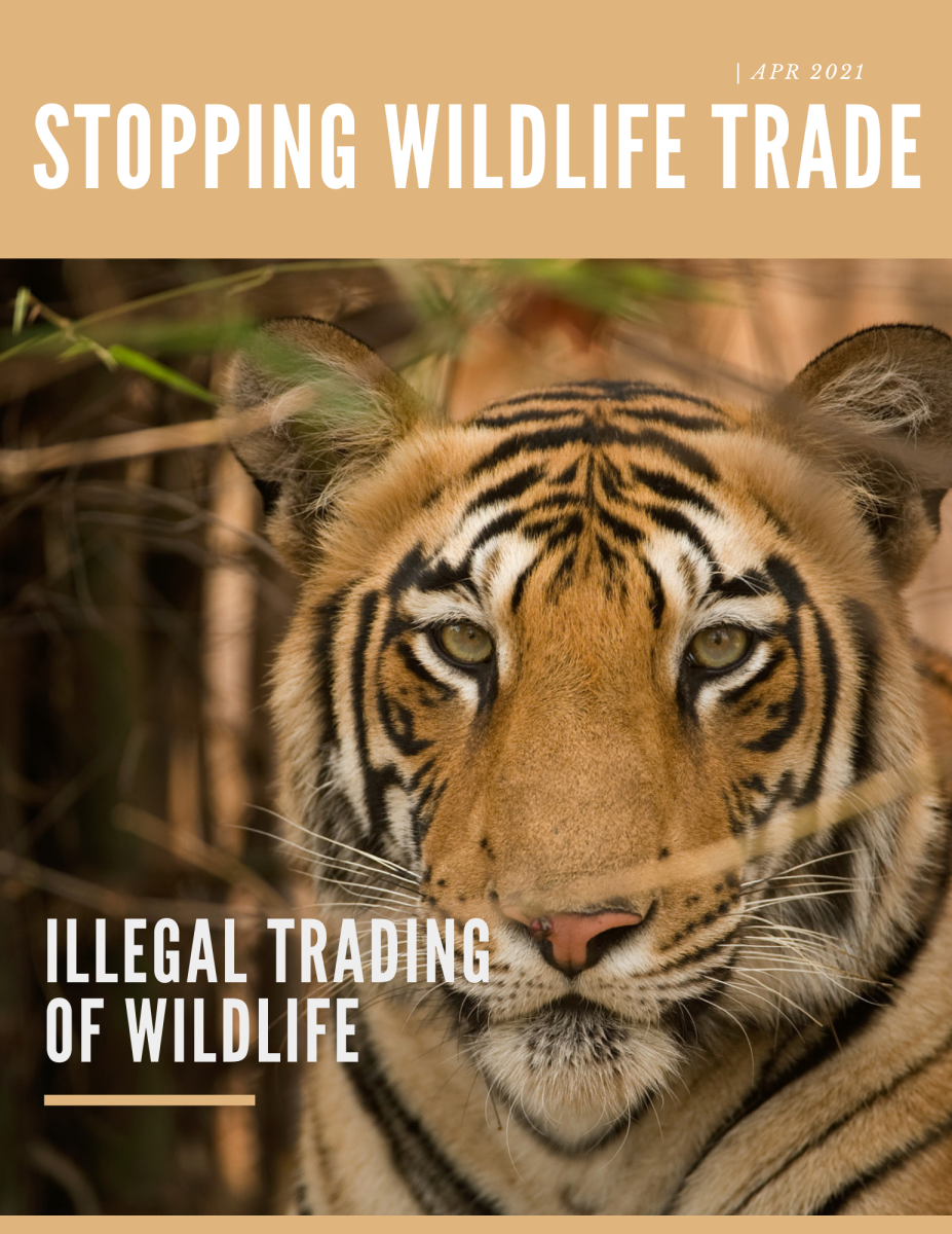 Wild Life Trading - Illegal Trading of Wild Life