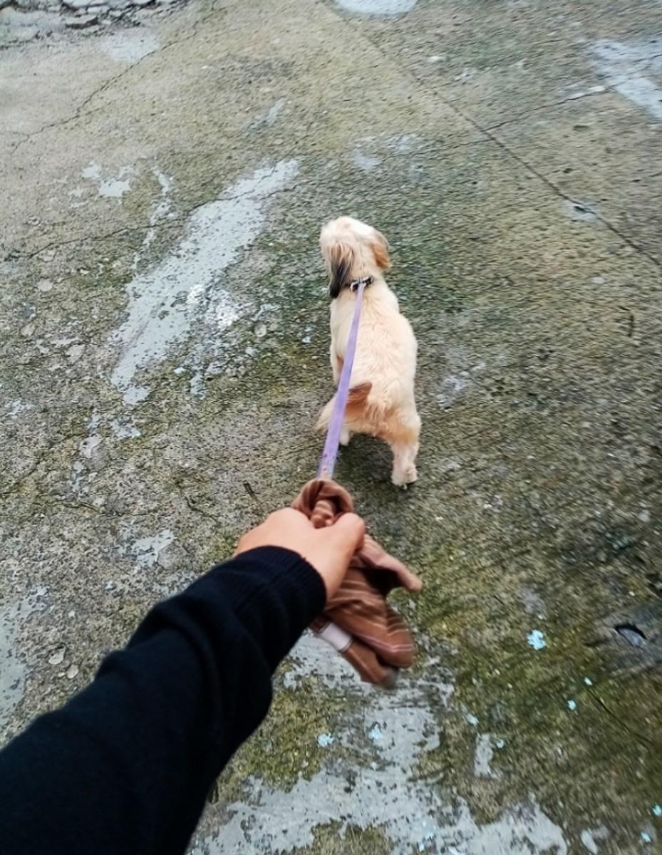 to_my_bestfriend