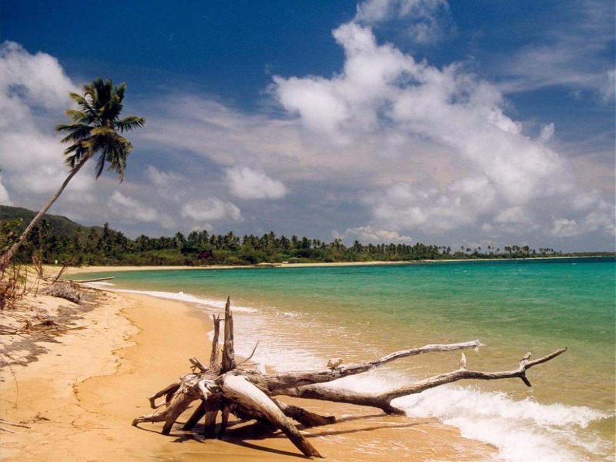 Green Beach, Vieques Puerto Rico