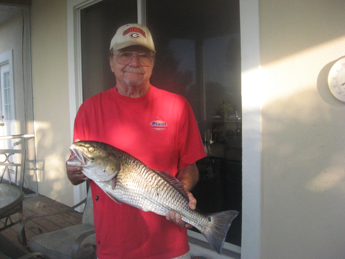 Redfish is a healthy food that my family really enjoys!