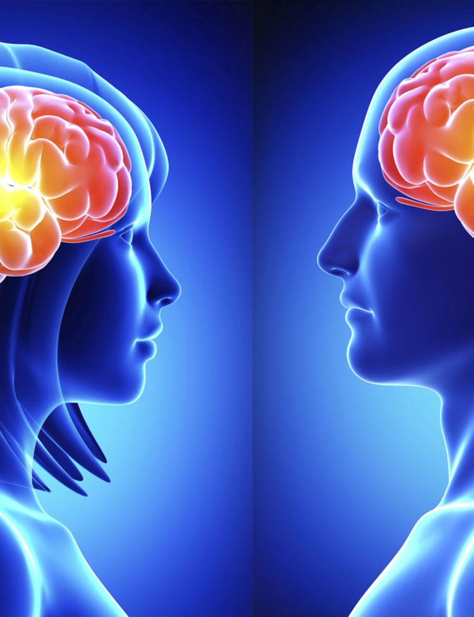 science-behind-love