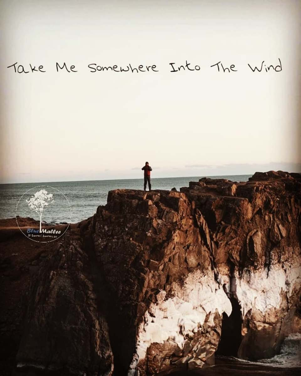indie-folk-single-review-take-me-somewhere-into-the-wind-by-blue-mallee