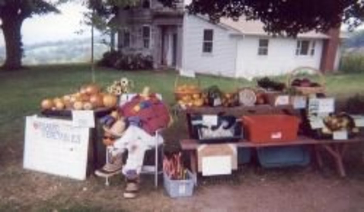 Our self-service roadside stand at the Connecticut farm