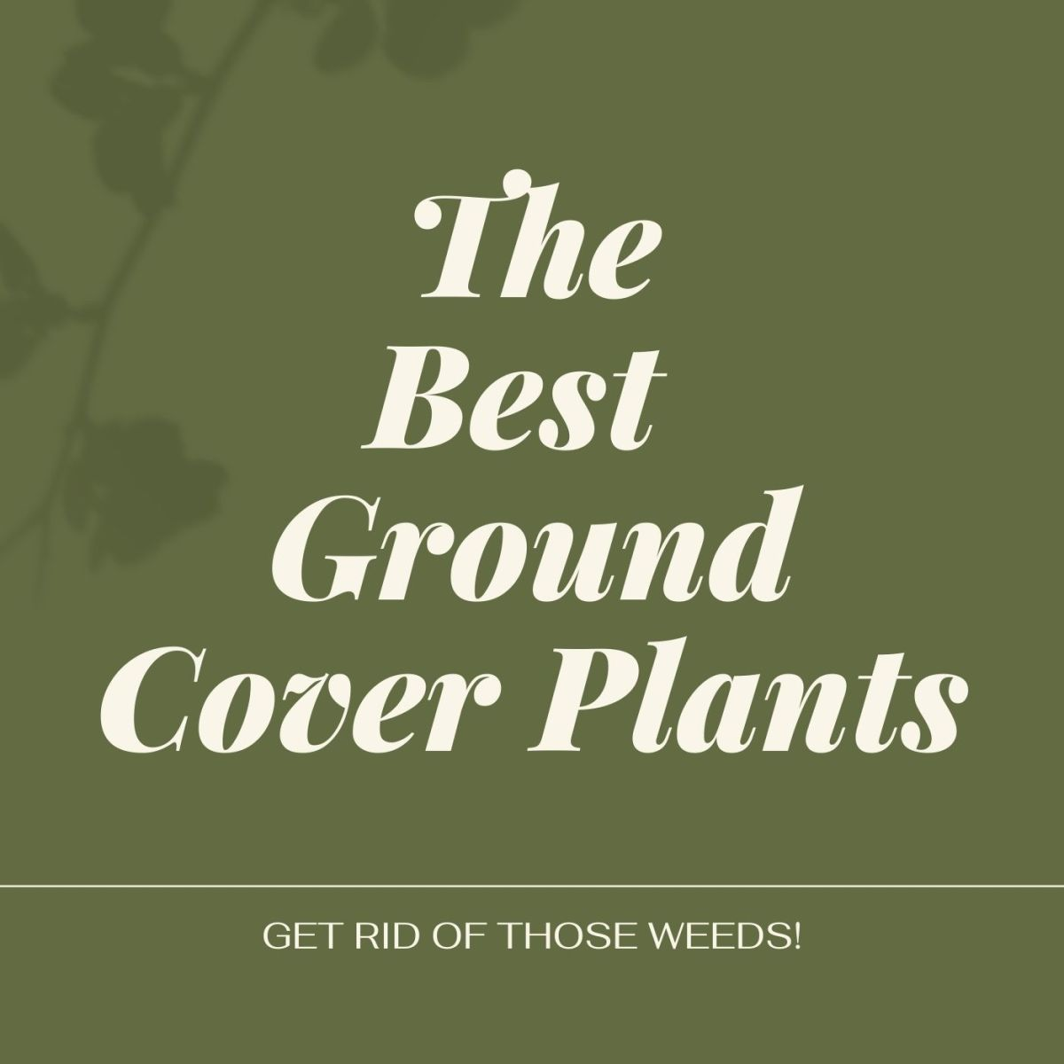 These plants will also prevent weeds from forming.