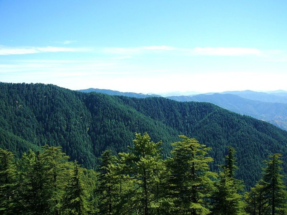Breathtaking View of Kufri