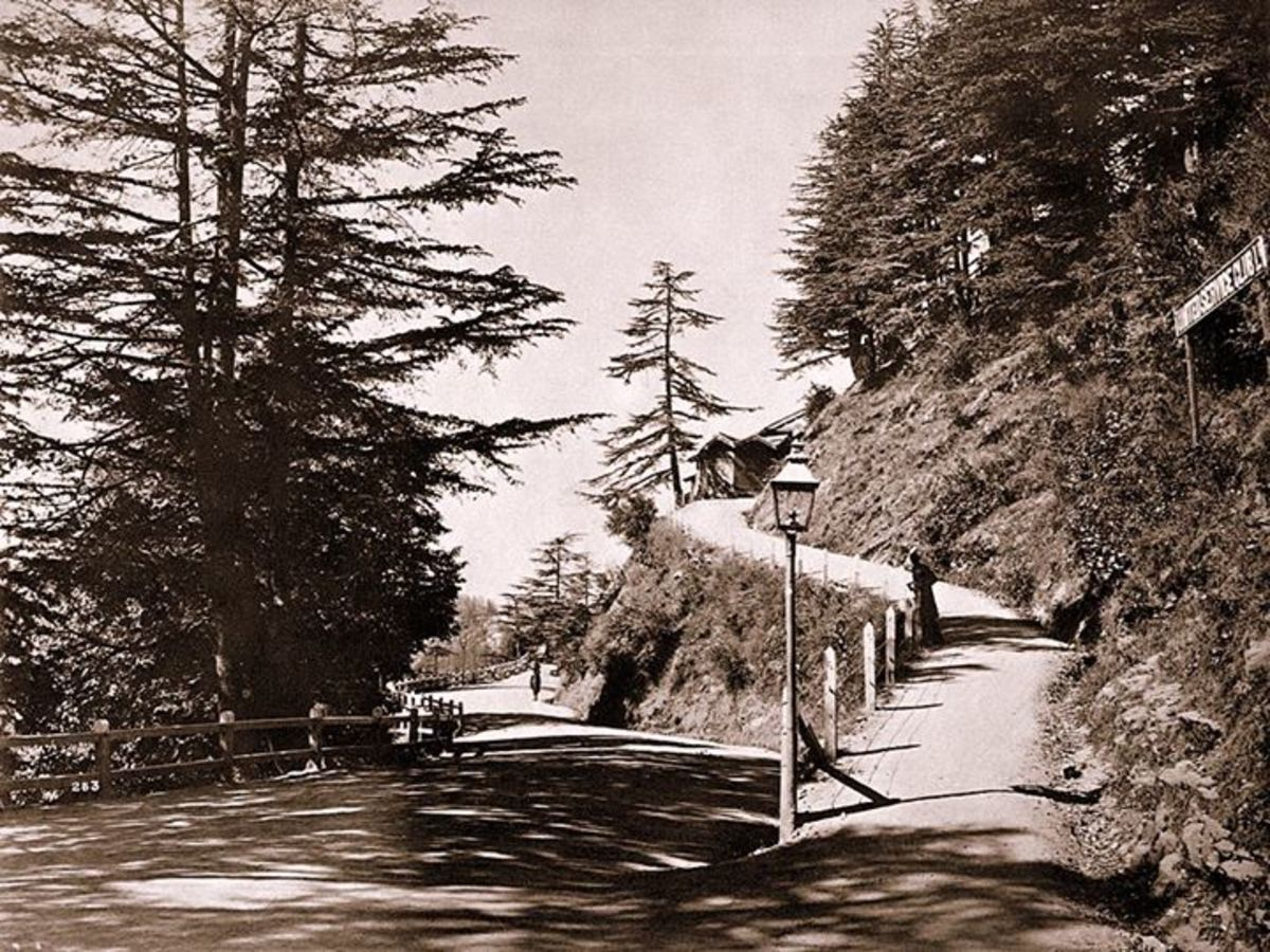 Chalet day road towards US club from the High court Shimla