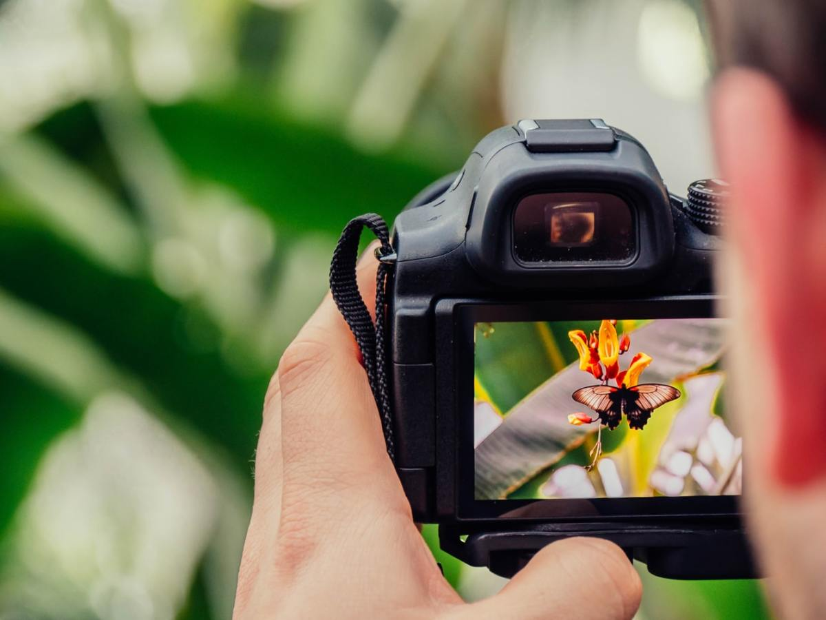 Setting the Tone: How to Take Powerful Pictures