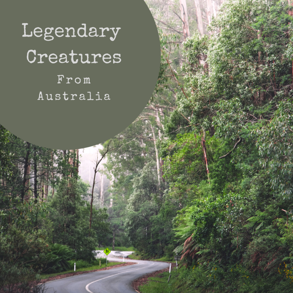Australia is home to many mysterious creatures.