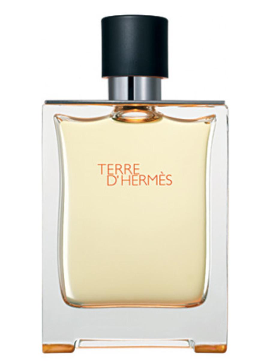 Terre d'Hermes Hermès for men