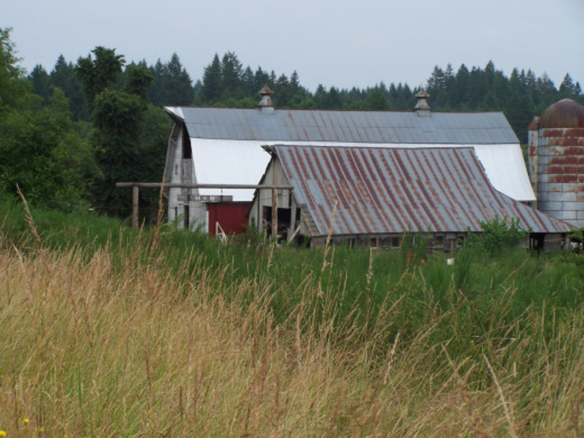 The Barn House, with a Shed and Silo