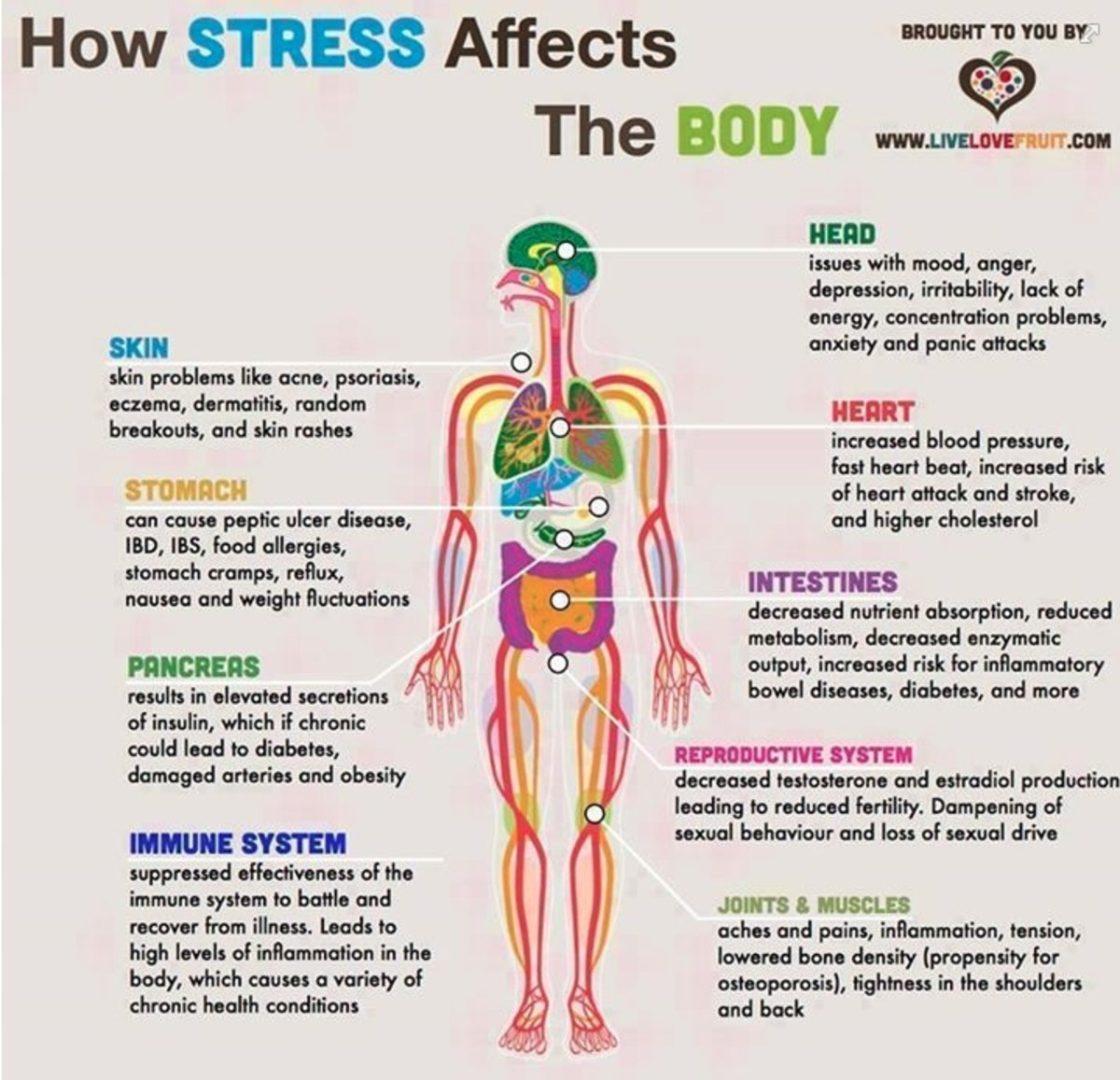 How stress affects the body!