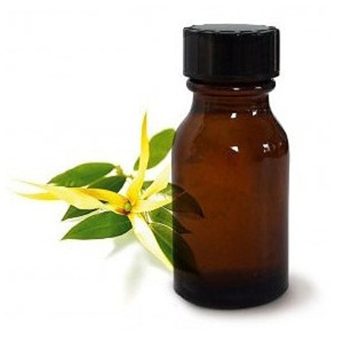 my-favorite-essential-oils-for-stress-reduction