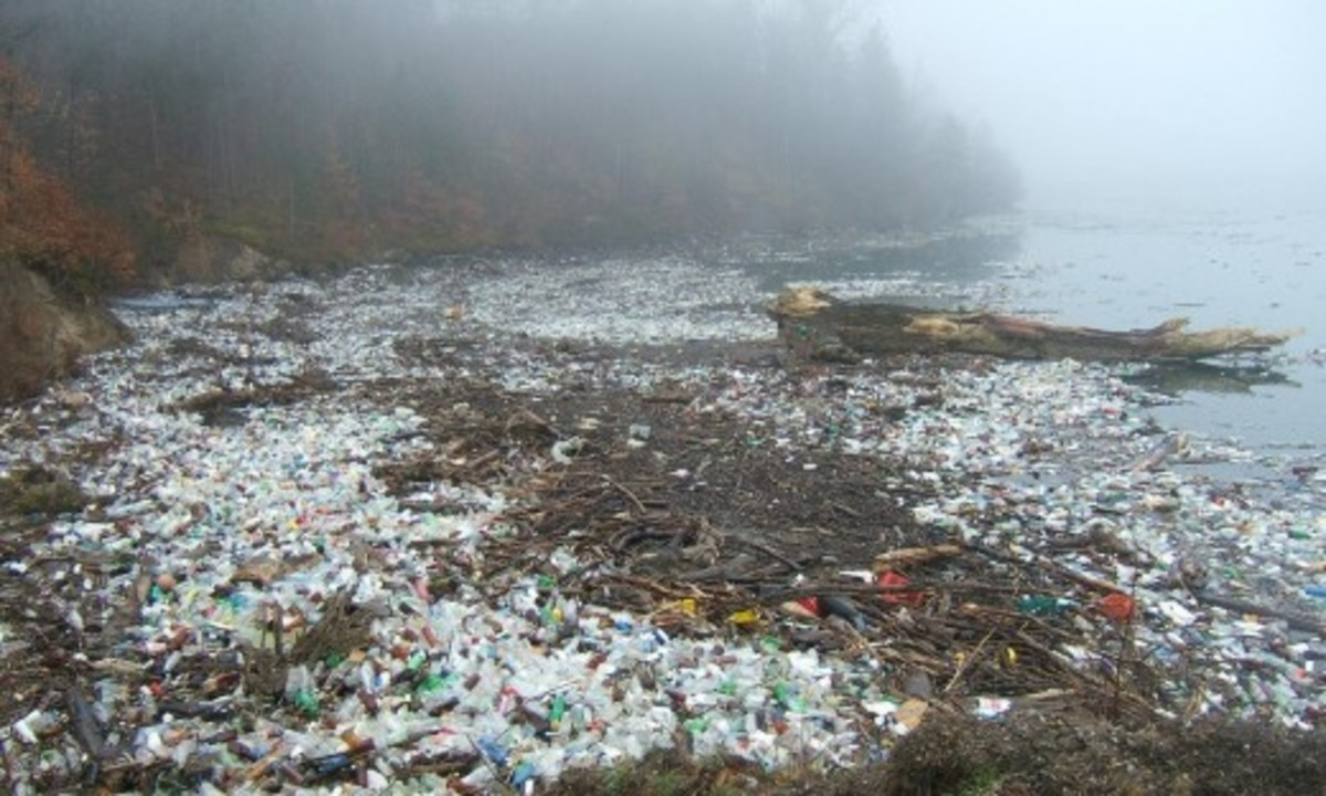 Battling Plastic Pollution One Cup at a Time