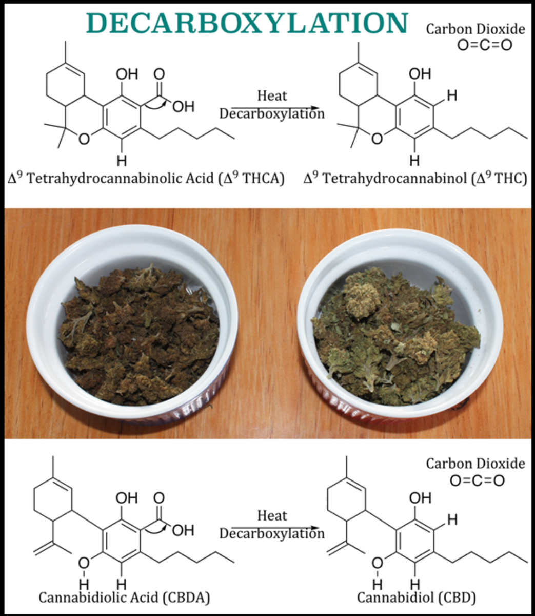 Toasted (activated) herbs on the left, dried herbs on the right