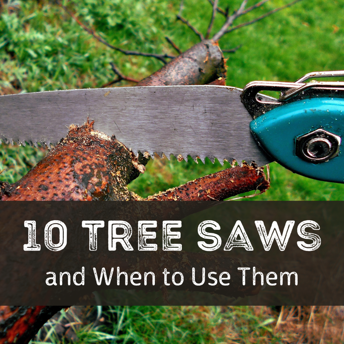 Discover 10 types of handy saws and which gardening tasks you should use them for.