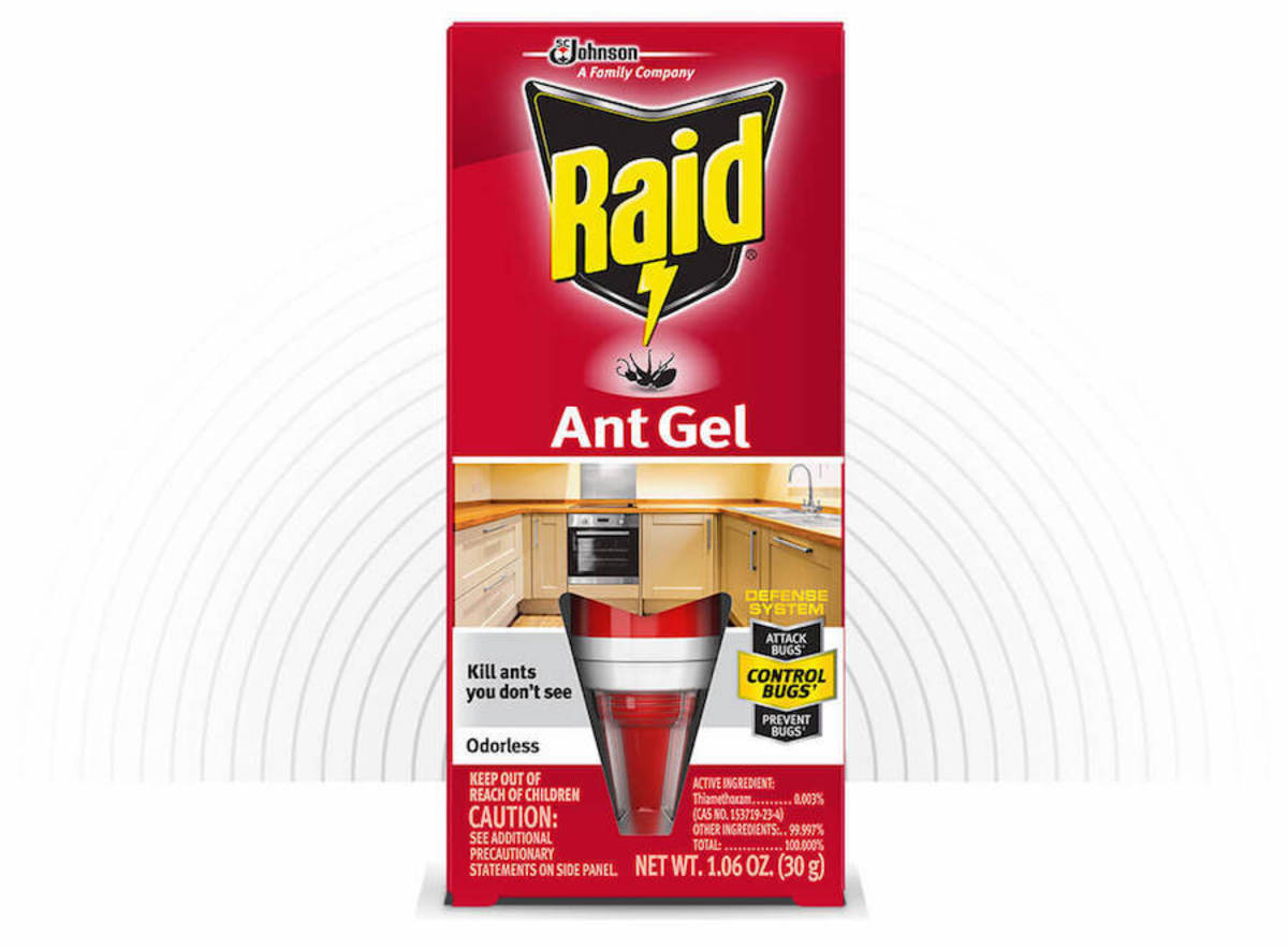 how-to-get-rid-of-argentine-ants