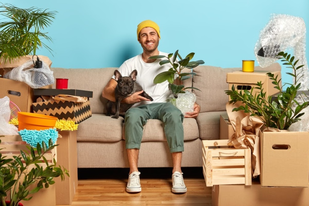 Landlord Not Accepting Your Pet? 7 Tips to Change Their Mind