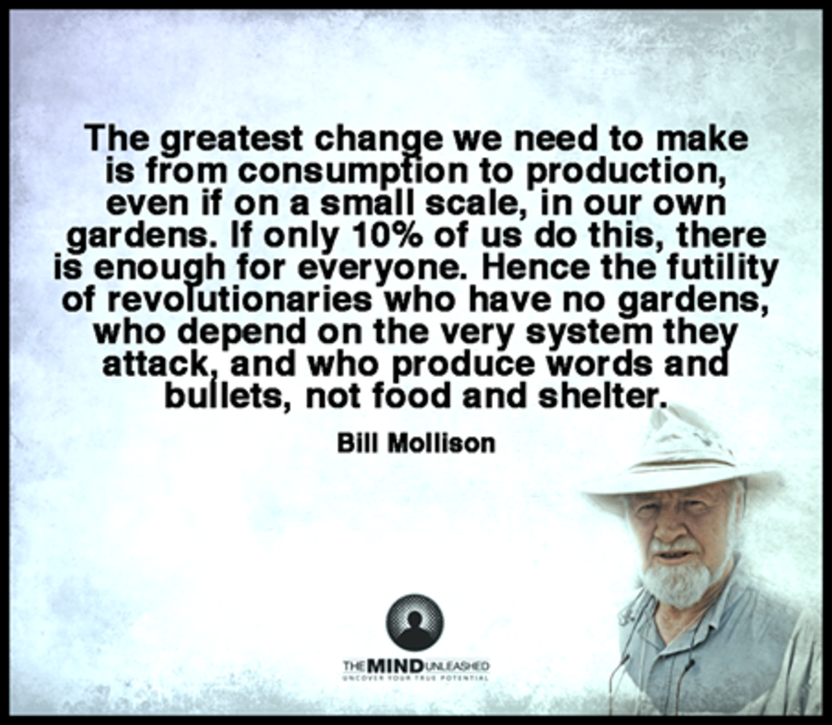 save-money-on-gardening