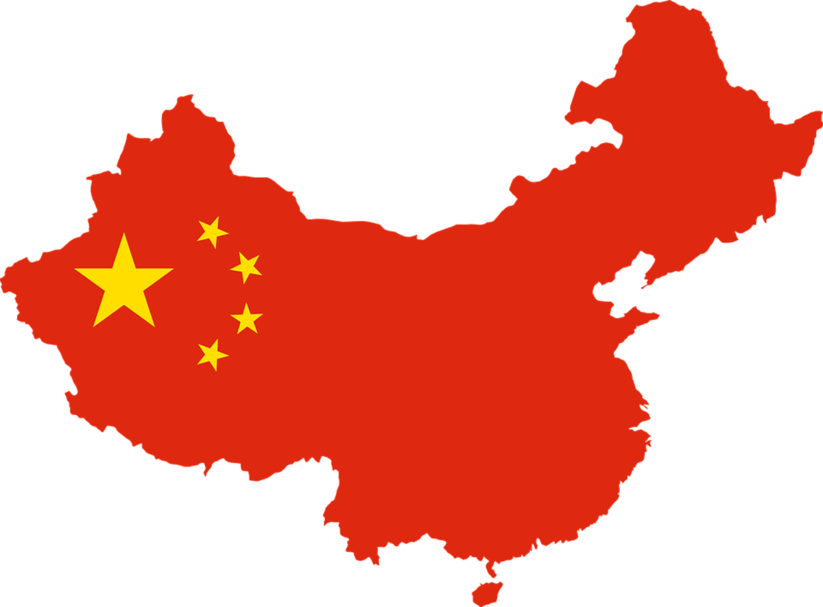 China's one-child policy was condemned as a violation of human rights and found to be unworkable as a viable solution.