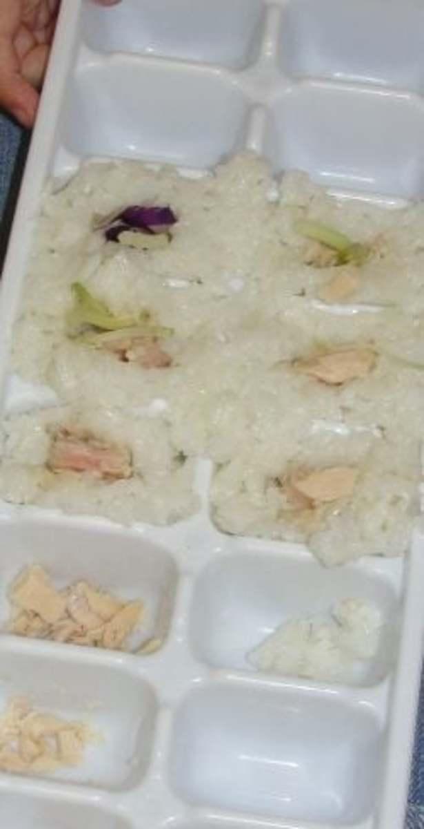 Making Simplified Sushi