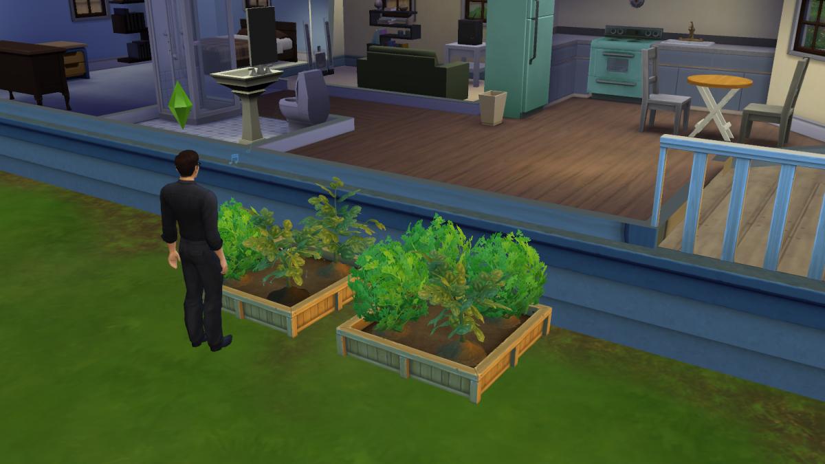 """Sims 4"" gardening for profit!"