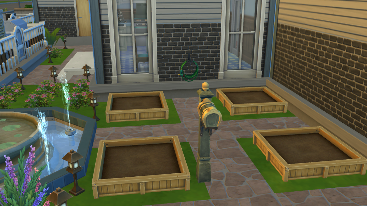 A beginner's garden.