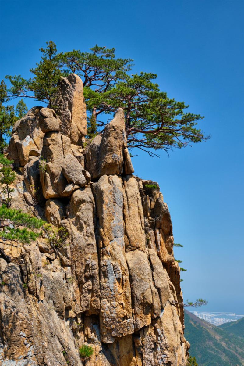 life-between-the-rocks