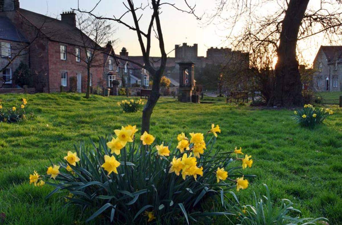 Bamburgh village green in the spring - you can't get away from the castle here