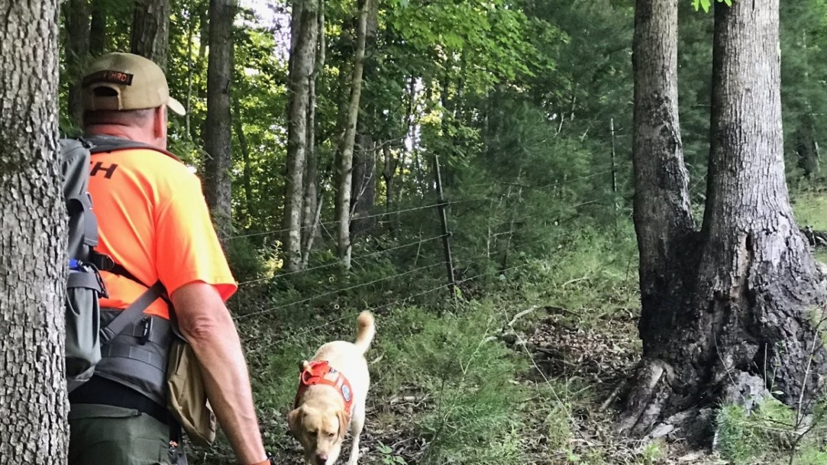 The search for Summer Wells continues in the rugged terrain of Tennessee. Photo courtesy of New Channel 5.