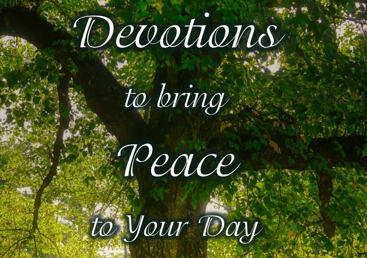 Devotions for Your Daily Walk With Christ