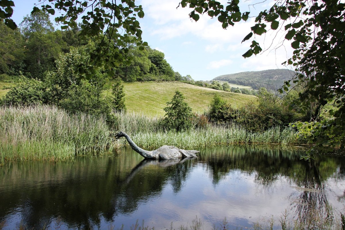 If you go down to the Loch today, you might be in for big surprise...