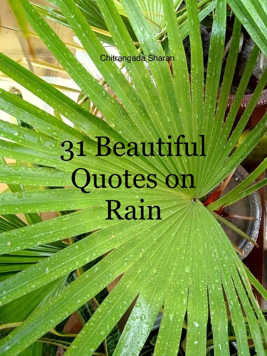 31 Beautiful Rain Quotes, to Wash Away the Pain