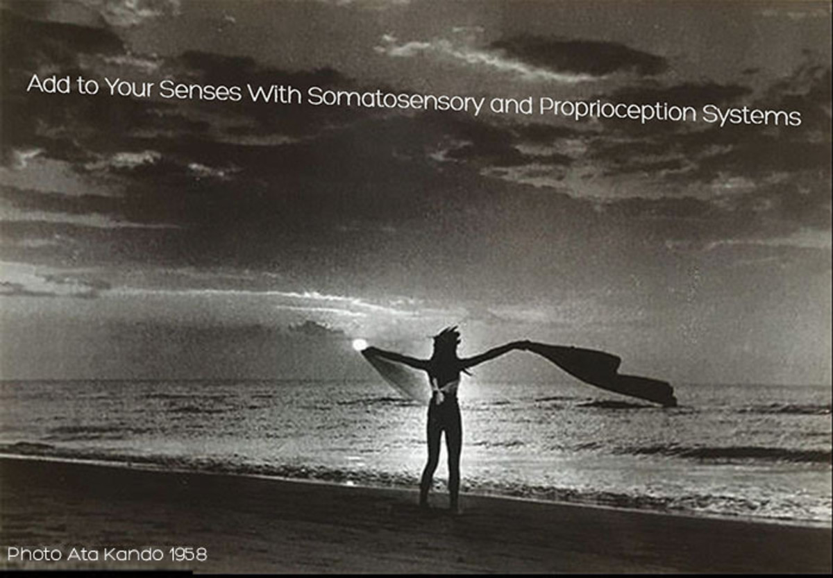 Add to Your Senses With the Somatosensory and Proprioception Systems