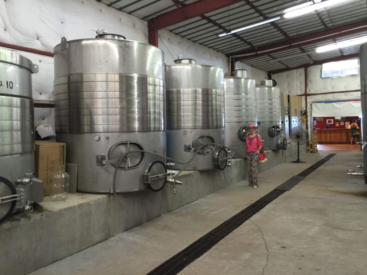My wife next to stainless steel tanks where juice of grapes is fermented into wine.