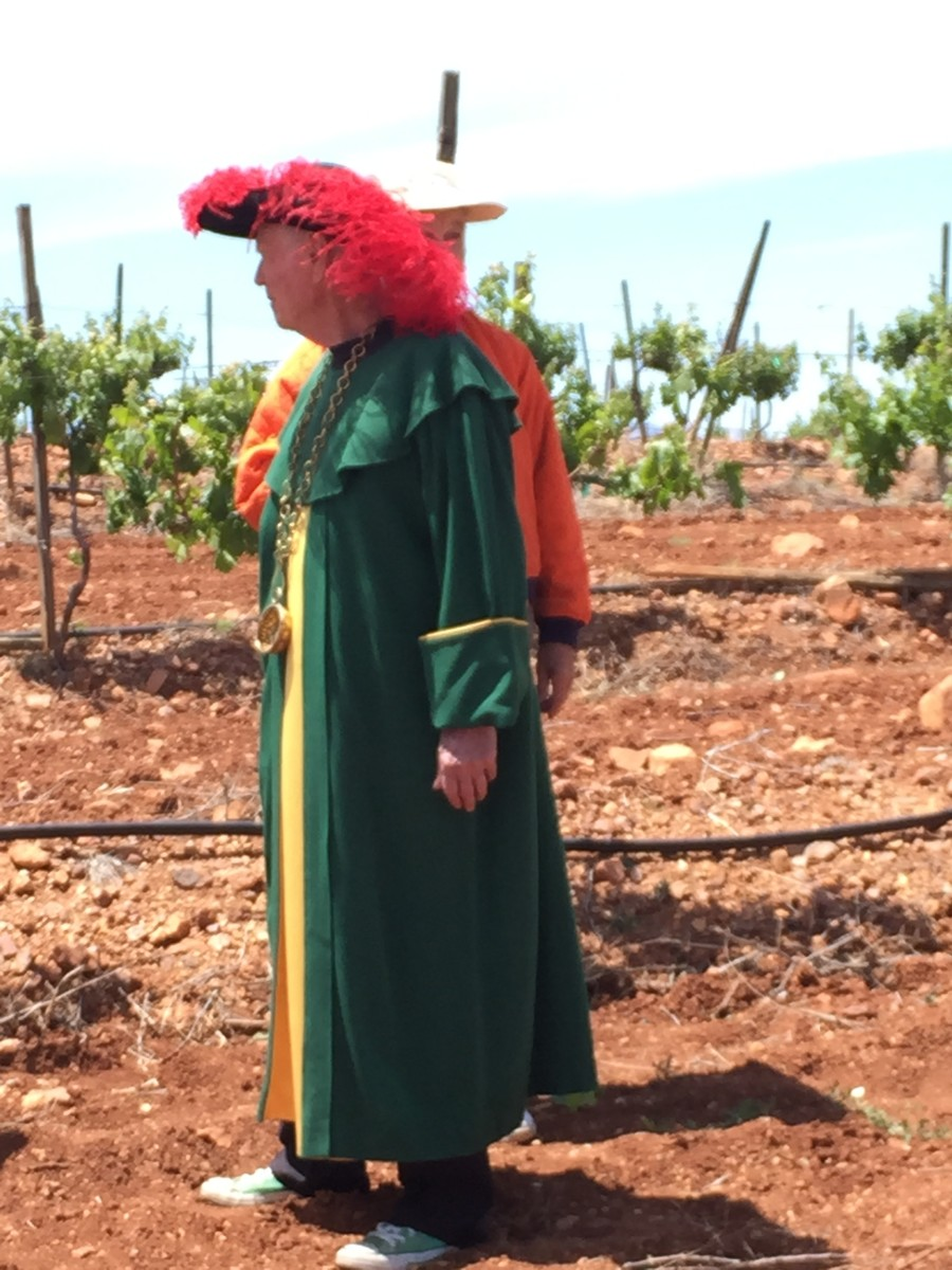 Dr. Dutt walking among the grape vines in his ceremonial outfit.
