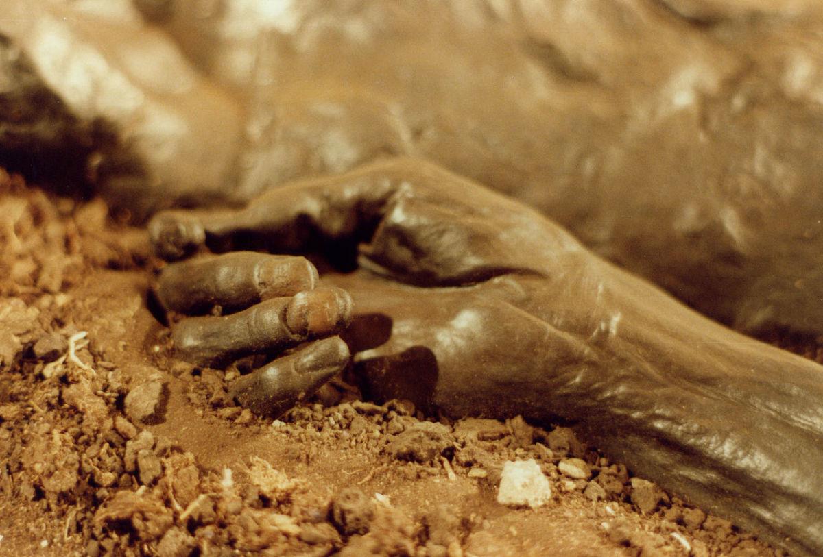 Hand of Grauballe Man