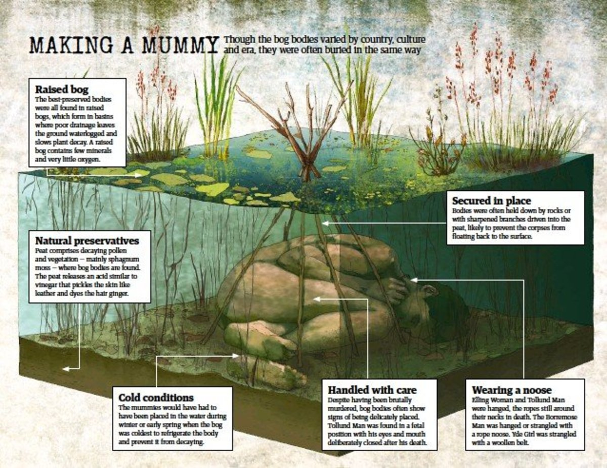 Secrets of the Bog Mummies and the Importance of Bogs