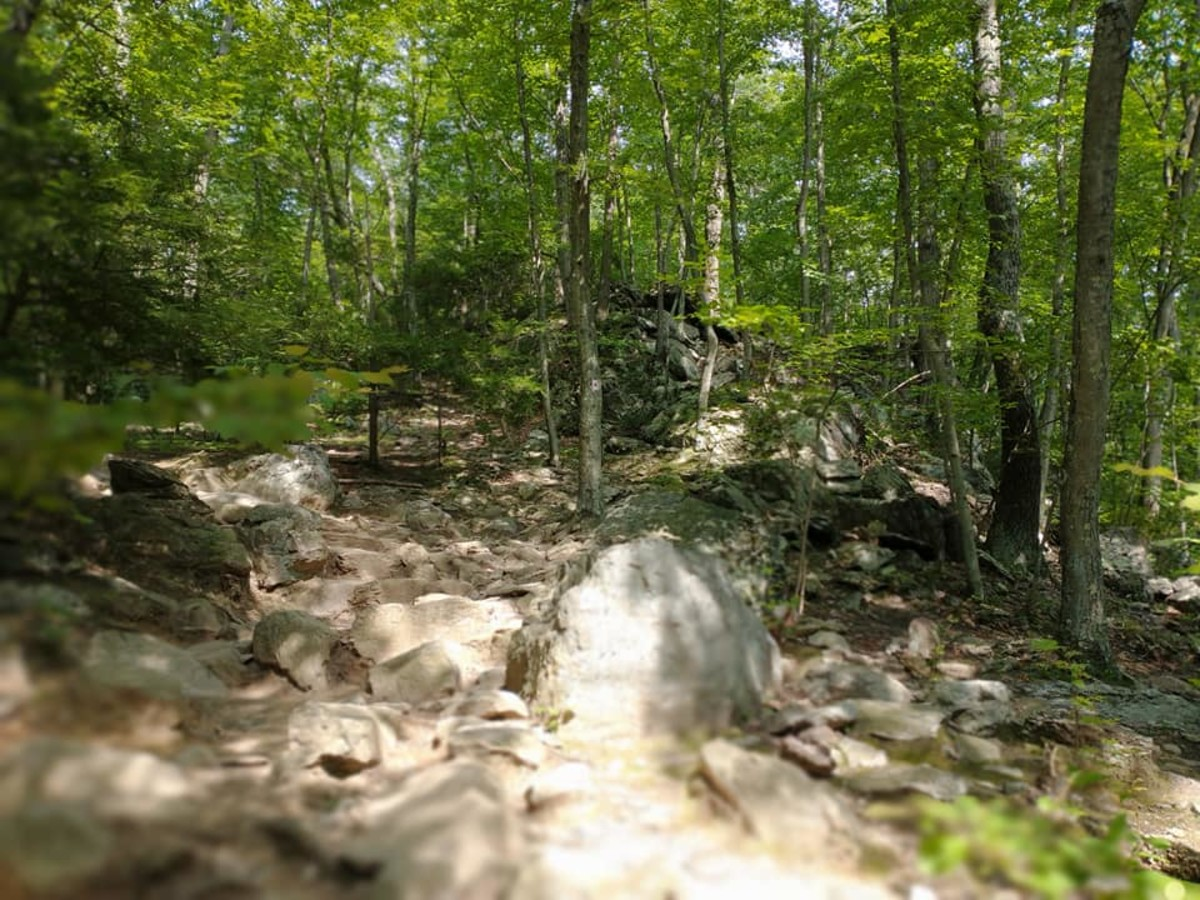 Uphill Rock Scramble @ Mt. Tammany