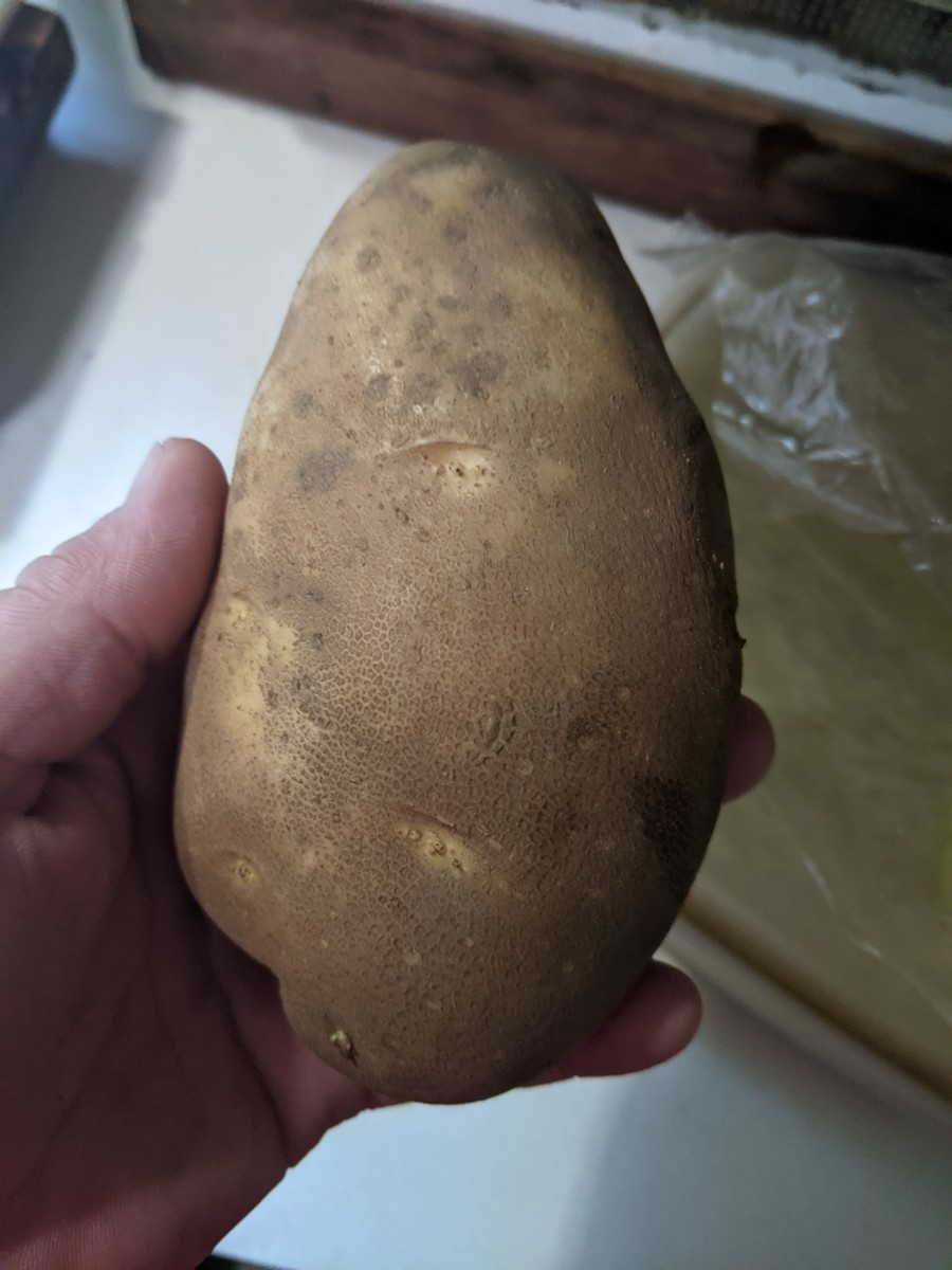 deep-fryer-oil-clarifying-with-a-raw-potato