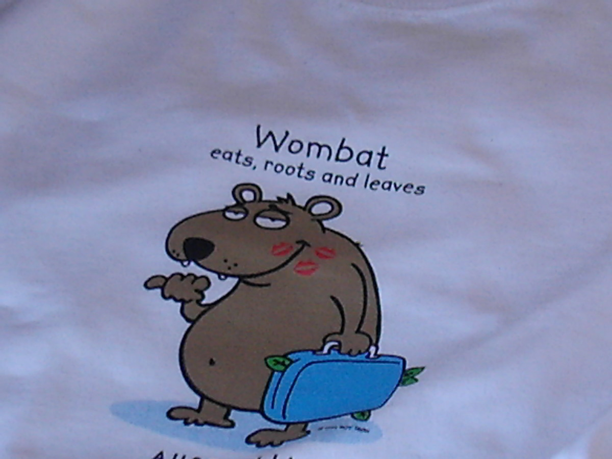Wombats eat roots and leaves