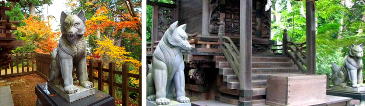 The Japanese Beliefs & Superstitions About Wolves
