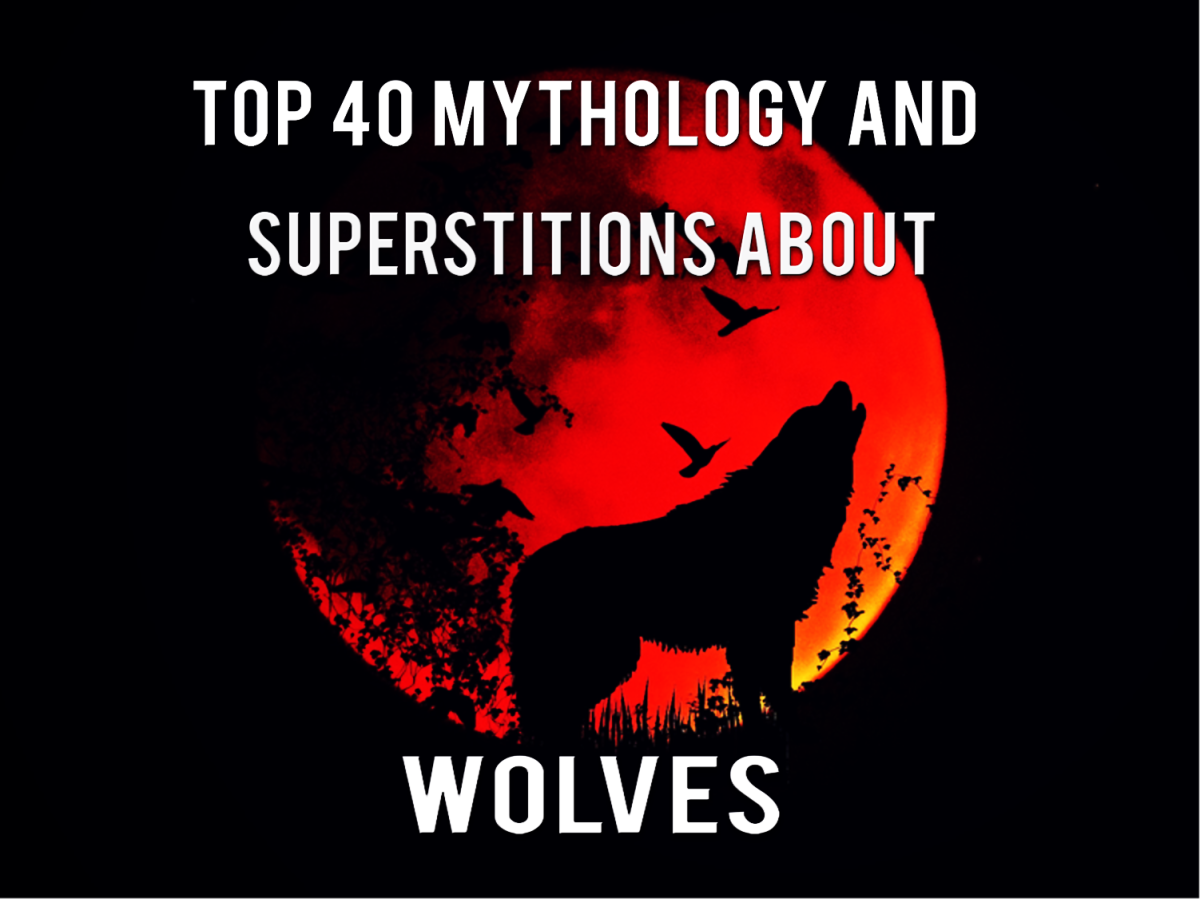 Top 40 Mythology And Superstitions About Wolves