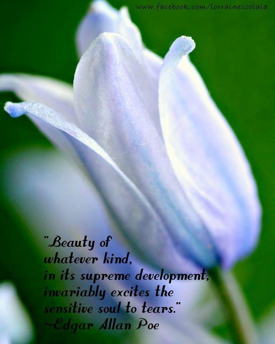 building-a-meaningful-life-sundays-inspiration27-to-nithya-venkat