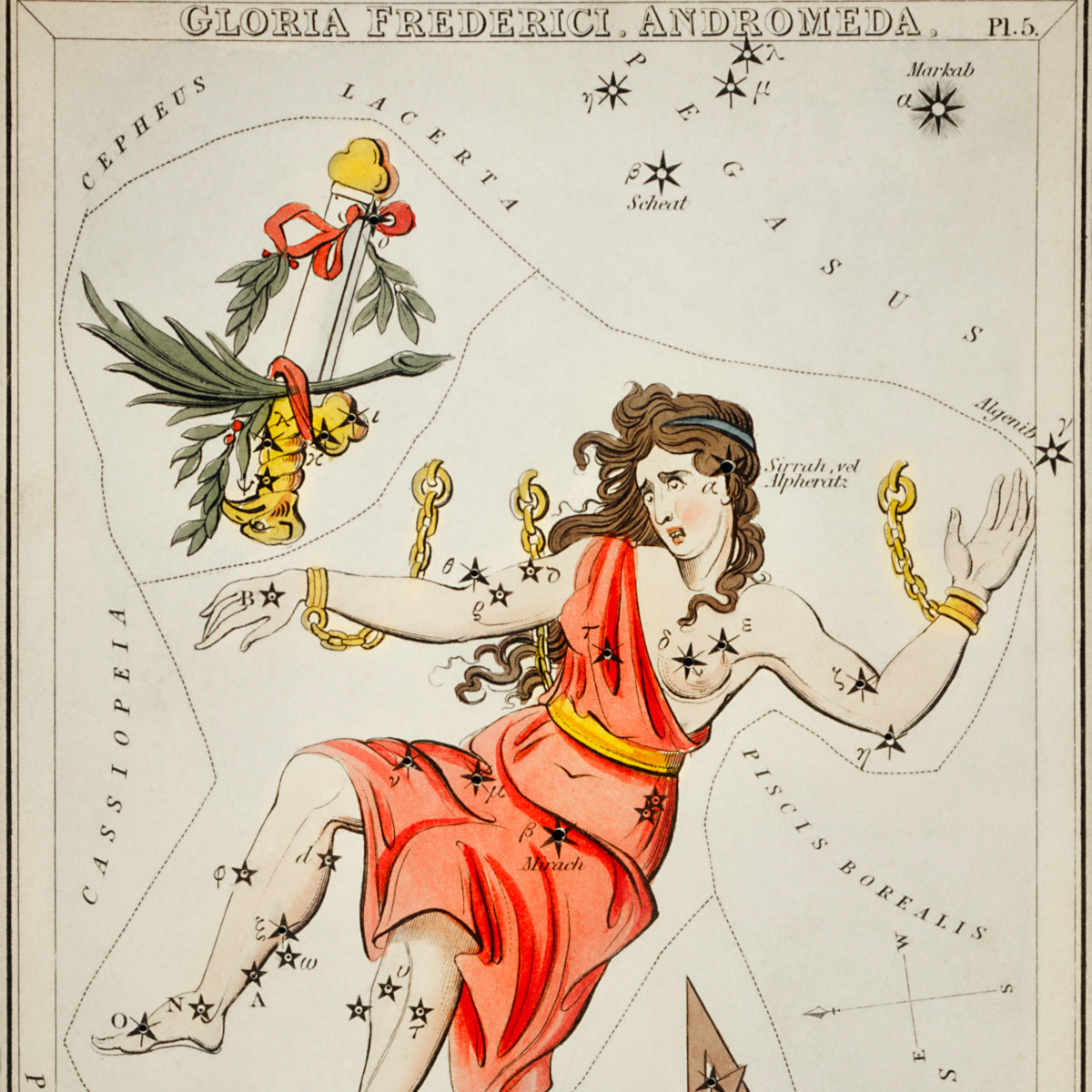 Astronomical chart illustration of Gloria Frederici, Andromed by Sidney Hall.