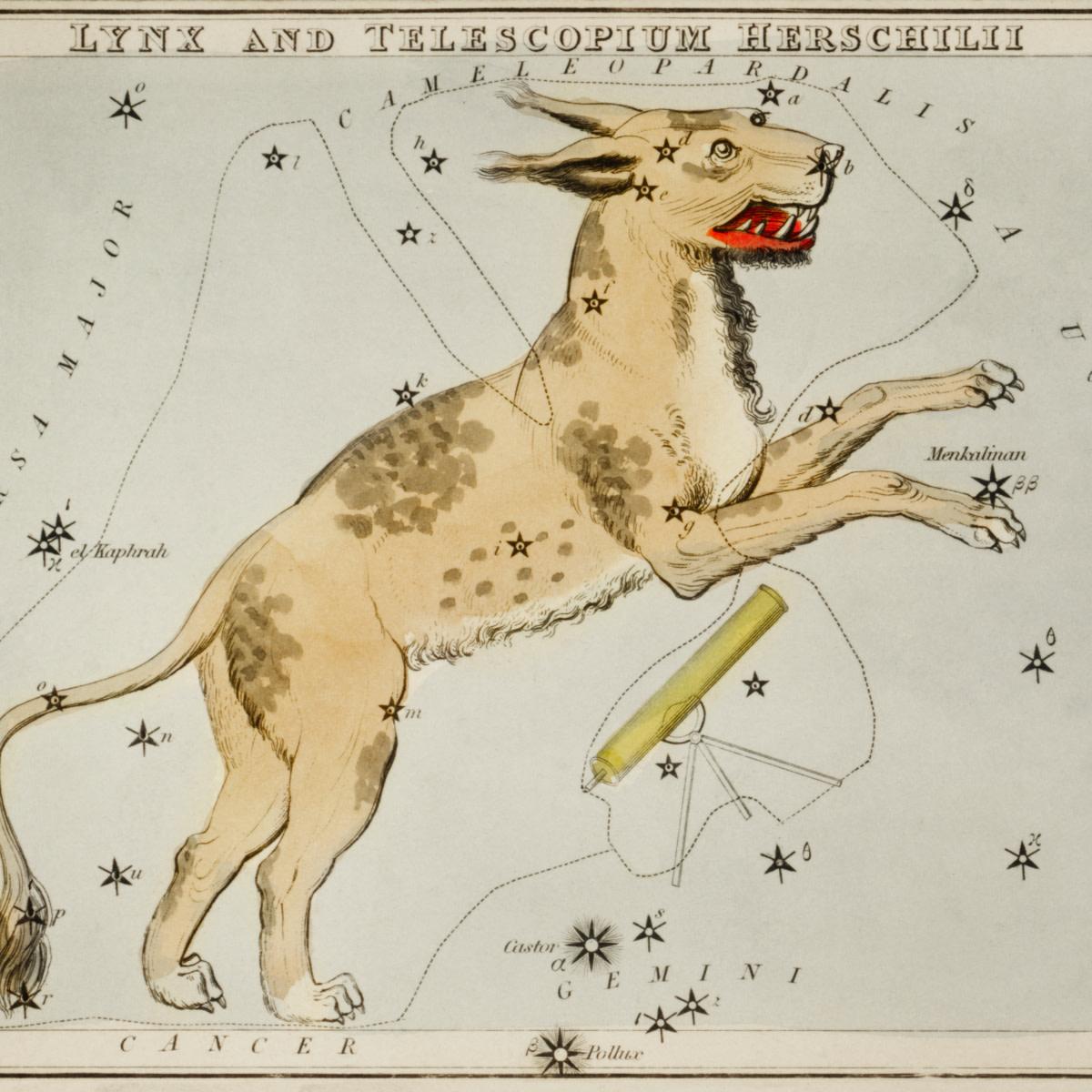 Sidney Hall's Lynx and the Telescopium Herschilii.