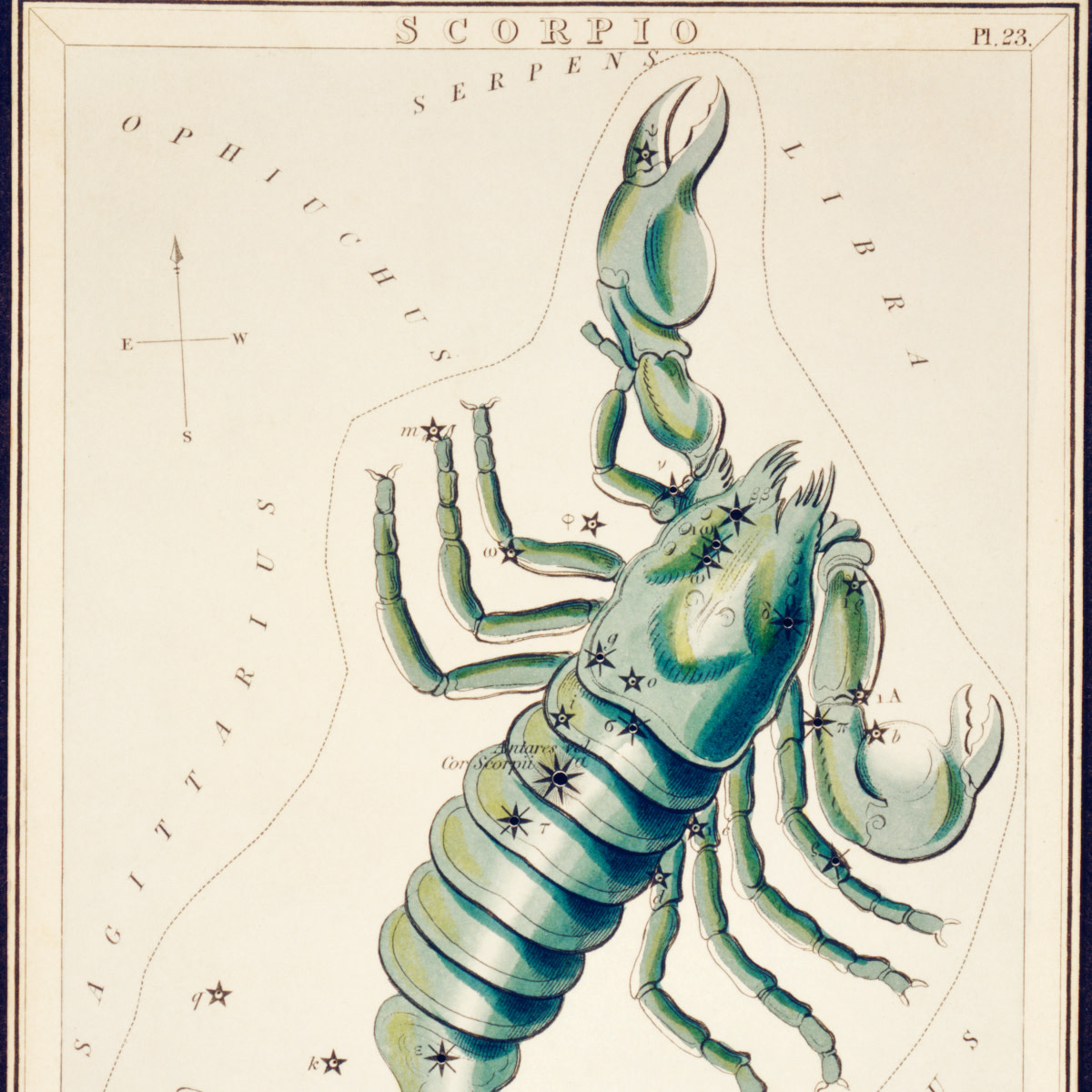 Sidney Hall's astronomical chart illustration of the Scorpio. Original from Library of Congress.