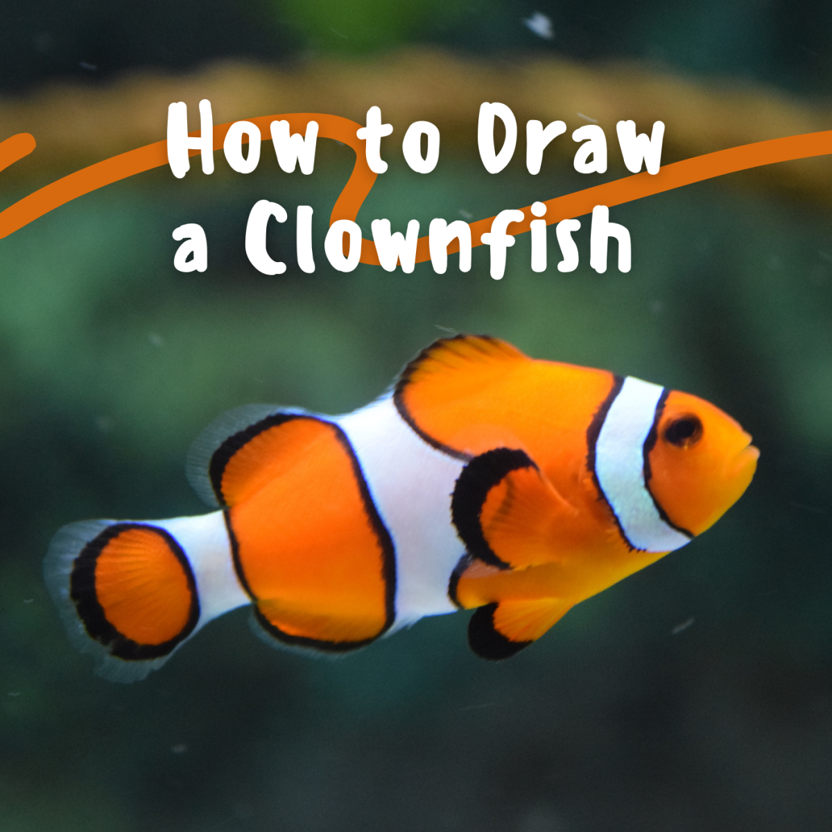 Learn how to make a clownfish drawing.