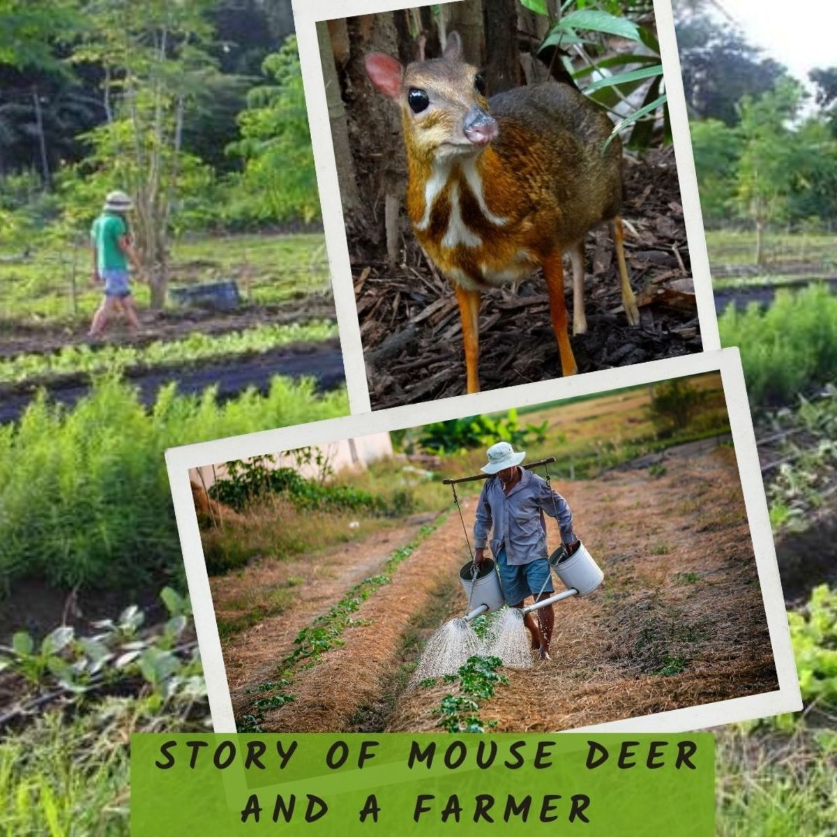 Children Bedtime Story - Story of Mouse Deer and a Farmer