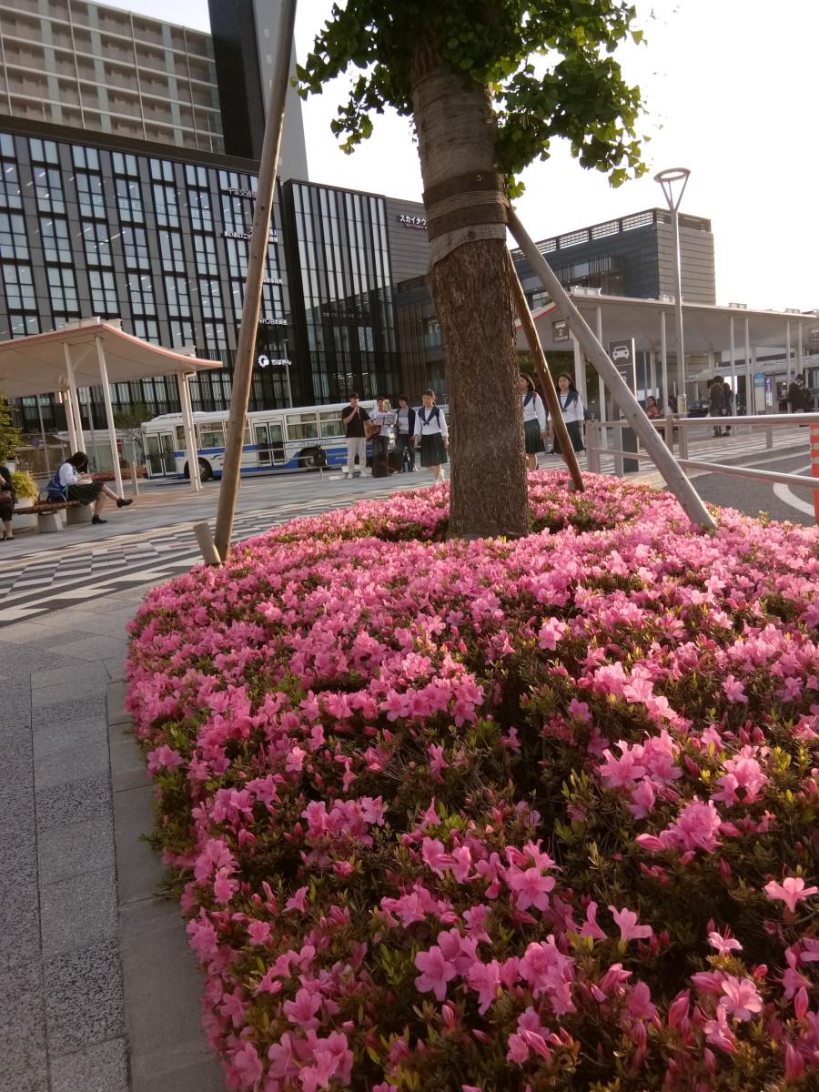 Airport Town of Narita